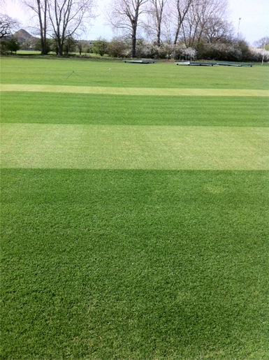 Nuneaton Turf Cricket Square Restoration Total-Play