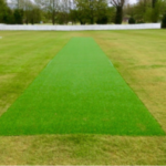 Fresh new cricket pitch Total-Play