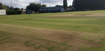 Turf Cricket Square Restoration