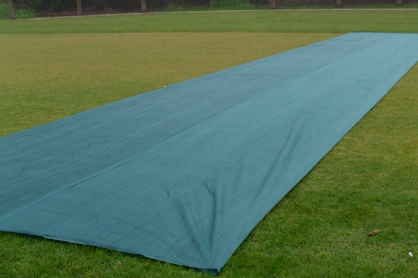 TGC Cricket Germination / Frost Protection, side angle photo