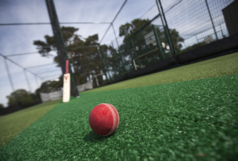 Non Turf Cricket Ball and Bat Close Up Total-Play