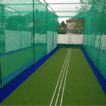 Artificial cricket pitch and net