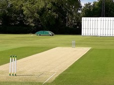 Cricket Sight Screens by total-play Ltd